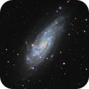 NGC 4559 in Coma Berenices,                                Jim Thommes