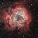 NGC 2237 - Rosette,                                Lorenzo Siciliano