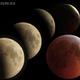 Lunar eclipse 2019,                                Donnie B.