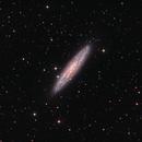 NGC253,                                Rex