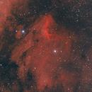 The Pelican Nebula,                                Wayne Jaeschke
