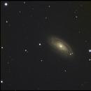 M88,                                Dale R.