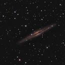 NGC 891,                                Nikolay Vdovin