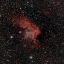 NGC 7380  Wizard Nebula,                                Jamee Donithan