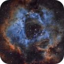 Rosette Nebula using the Hubble Palette (SHO),                                Kurt Zeppetello