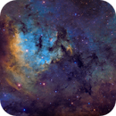 NGC 7822,                                Adam Landefeld