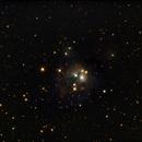 NGC7129 Cosmic Rosebud,                                dts350z