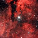 Sadr (nota anche come Sadir o Sador; γ Cygni/γ Cyg) IC 1318,                                Gianni Carcano