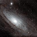 Andromeda,                                floreone