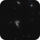 Siamese Twins or Butterfly Galaxies,                                Michael S.
