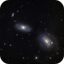NGC3169, 3166, 3165,                                Tom Harrison
