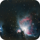 M42 AND RUNNING MAN,                                Astroneck