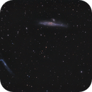 NGC4631,                                Aleksandr