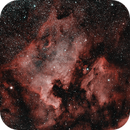 NGC7000 and IC5070: The North American and Pelican Nebulae (HOO) (2019),                                Daniel Tackley