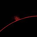 Sun, prominences, February 11, 2021,                                Ennio Rainaldi