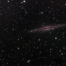 NGC891 and some PGC's,                                TheGovernor
