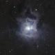 Iris Nebula,                                apaps
