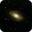 M81 - Bodes galaxy,                                André Wiget