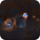 Rosette and Cone Nebulae (Ultra Wide Field),                                Tommy Lease