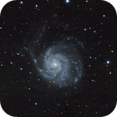 M101 & NGC5474 (view 1),                                Anders Johannesson