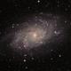 M 33 Galaxy,                                Hamid Naseri