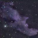 Witch Head Nebula,                                Martin Williams