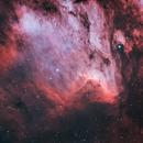 Pelican Nebula IC 5070 | Bi-Color HOO,                                Trevor Jones