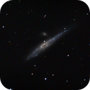 ngc4631 with color taken from image taken with the TS65 and Nikon d5300,                                Stefano Ciapetti