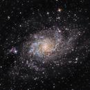 M33 Reprised,                                George Simon