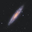 NGC253 - Sculptor Galaxy / 2020,                                Mikko Viljamaa