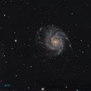 M101,                                Gordon Hansen
