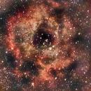 Rosette Nebula,                                LarryDoucet