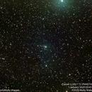 Comet C/2017 T2 (PANSTARRS) #1,                                Molly Wakeling