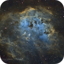 IC410 Tadpole Nebula,                                Graem Lourens