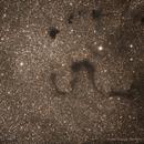 Snake Nebula (Barnard 72),                                Israel Barbosa de Brito