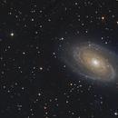 M81 M82,                                Dan Watt