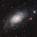 NGC2403: a spectacular spiral galaxy,                                Albert van Duin