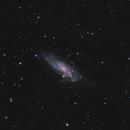 NGC 4559,                                Barry Wilson