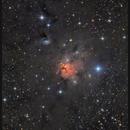 Northern Trifid,                                sky-watcher (johny)
