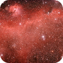 Seagull nebular,                                Louis Wang