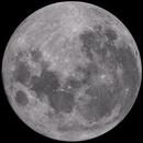 The Moon 99.8% Waning,                                David
