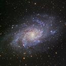 M33 The Triangulum Galaxy,                                Shannon Calvert