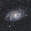 Triangulum Galaxy - M33,                                Mike Kline