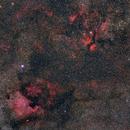 Cygnus Widefield,                                Florian_Pieper