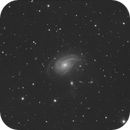 NGC 772 luminance,                                rhedden