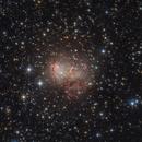 IC 10 - Irregular Dwarf Galaxy,                                Robert Eder