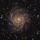IC 342 The Hidden Galaxy,                                Frank Iwaszkiewicz