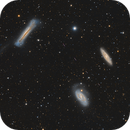 Leo Triplet and Asteroids Duodecet,                                Chen Wu