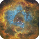 Rosette Nebula NGC2244 (Bortle 8),                                Carastro