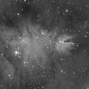 Cone Nebula,                                Vlad